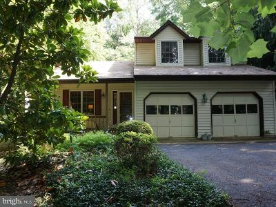 Centreville Single Family Home For Sale: 113 Griffin Court