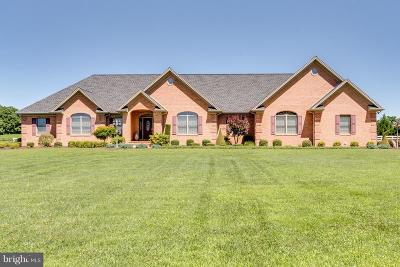Hedgesville Single Family Home For Sale: 116 Statice Drive