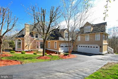 Centreville Single Family Home For Sale: 5411 Chandley Farm Court