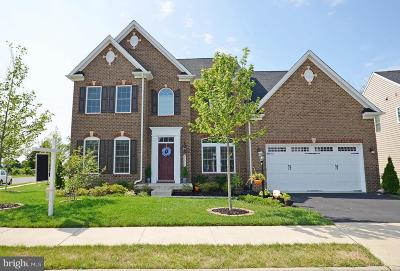Aldie Single Family Home For Sale: 41511 Carriage Horse Drive