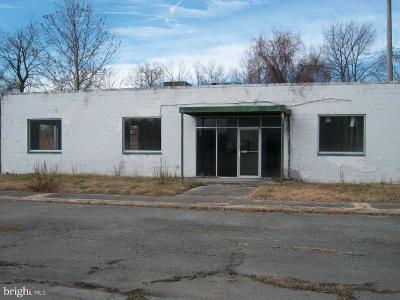 Commercial For Sale: 100 Nanticoke Avenue