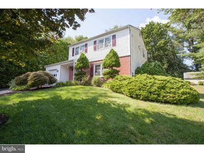 Hatboro Single Family Home For Sale: 2461 Winding Lane