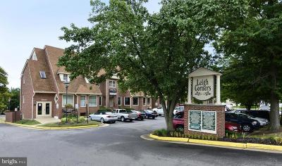 Great Falls Condo For Sale: 10130 Colvin Run Road