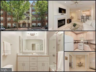 Arlington Condo For Sale: 2330 14th Street N #201