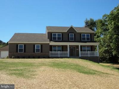 Hagerstown Single Family Home For Sale: 12230 Walnut Point Road