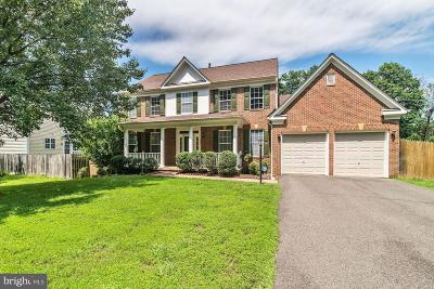 Centreville, Clifton Single Family Home For Sale: 5205 Audrey Drive