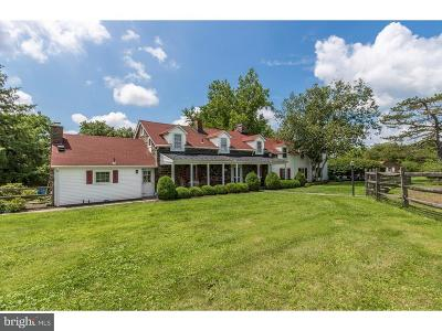 Bucks County Single Family Home For Sale: 50 E Dark Hollow Road