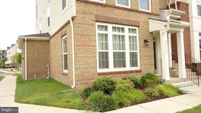 Chantilly Rental For Rent: 43419 Town Gate Square