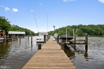 Lusby Single Family Home For Sale: 224 Buoy Court
