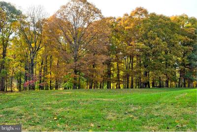 Centerville, Clifton Residential Lots & Land For Sale: 7014 Dalemar Drive