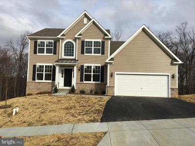 Downingtown Single Family Home For Sale: 3124 Qd Pippen Lane