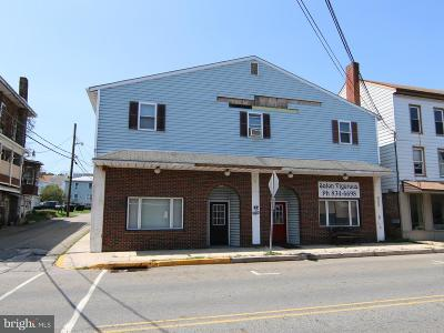 Duncannon Multi Family Home For Sale: 15 - 17 N Market Street
