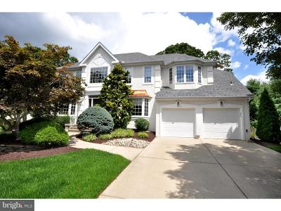 Cherry Hill Single Family Home For Sale: 100 Renaissance Drive