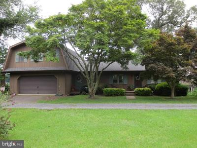 Cecilton, Earleville, Georgetown, Warwick Single Family Home For Sale: 50 Greenspring Road