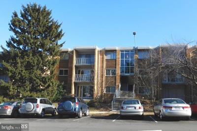 Falls Church Condo For Sale: 2909 Charing Cross Road #6