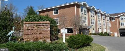 Annapolis Coop For Sale: 7101 Bay Front #202