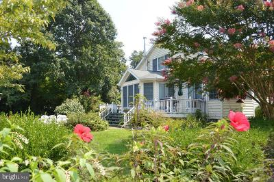 Chestertown Single Family Home For Sale: 9050 Point Lane