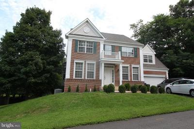 Herndon Single Family Home For Sale: 1381 Dominion Ridge Lane