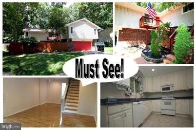Dumfries Single Family Home For Sale: 15724 Vista Drive