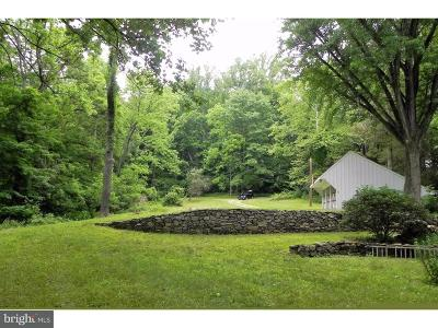 Newtown Square Single Family Home For Sale: 958 Plumsock Road