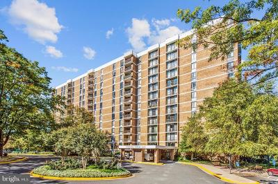 Falls Church Condo For Sale: 2311 Pimmit Drive #212