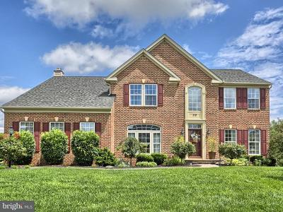 Mechanicsburg Single Family Home For Sale: 312 Cloudless Sky