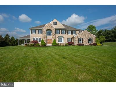 Chester Springs Single Family Home For Sale: 1131 Braefield Road