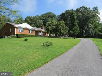 Westminster Single Family Home Under Contract: 1315 Boerner Road E