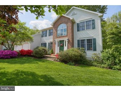 Single Family Home For Sale: 317 Grande Valley Road