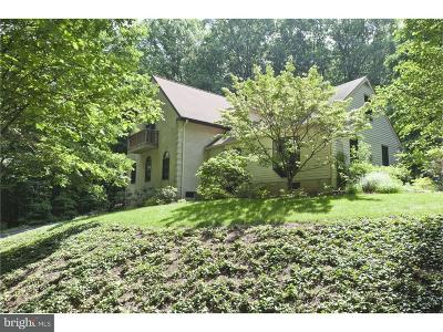 Bucks County Single Family Home For Sale: 3933 Branches Lane