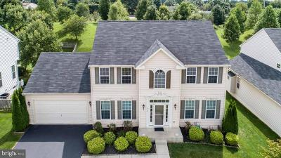 Carroll County Single Family Home For Sale: 866 Quiet Meadow Court