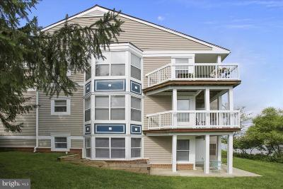 Ashburn Condo For Sale: 20572 Snowshoe Square #102