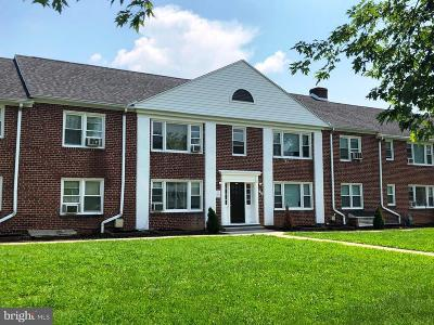 Hagerstown Multi Family Home For Sale: 1306 Potomac Avenue