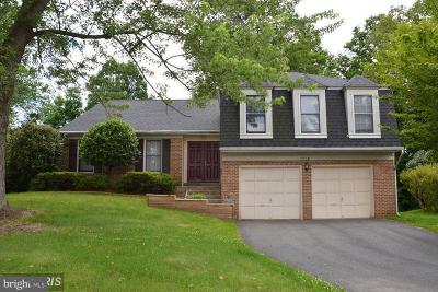 Chantilly Rental For Rent: 13538 Smallwood Lane