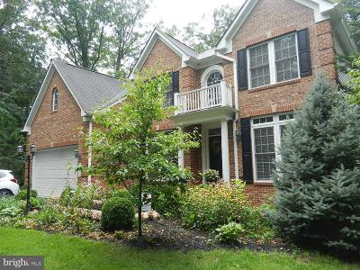 Loudoun County Single Family Home For Sale: 20719 Evergreen Mills Road