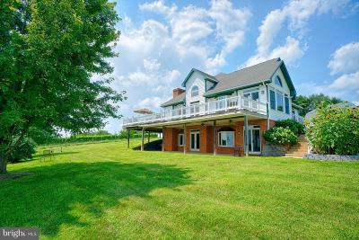 Loudoun County Single Family Home For Sale: 18105 Tranquility Road
