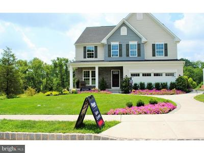 Pottstown Single Family Home For Sale: 102 Tallowood Drive