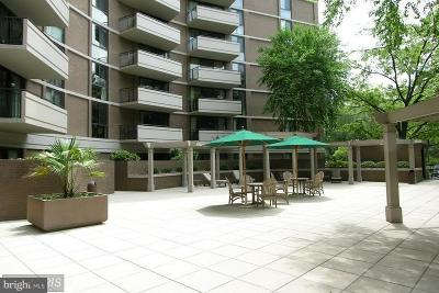 Chevy Chase Rental For Rent: 4620 Park Avenue N #204W