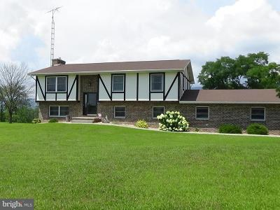 Newville Single Family Home For Sale: 430 Mohawk Road