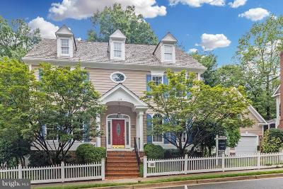 Gaithersburg Single Family Home For Sale: 114 Treehaven Street