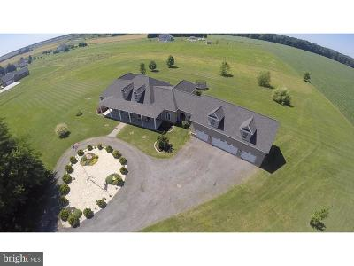 Townsend Single Family Home For Sale: 213 Green Giant Road