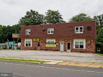 Claymont Commercial For Sale: 80 Governor Printz Boulevard