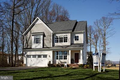 Loudoun County Single Family Home For Sale: Platinum Drive