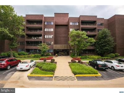 Hockessin Condo For Sale: 614 Loveville Road #B2E