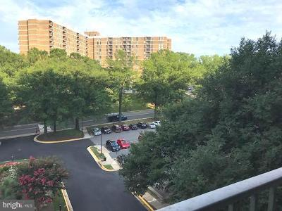 Falls Church Condo For Sale: 2300 Pimmit Drive #611