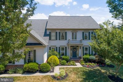 Loudoun County Single Family Home For Sale: 20276 Dawson Mill Place