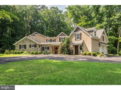 Bucks County Single Family Home For Sale: 6723 Paxson Hill Road