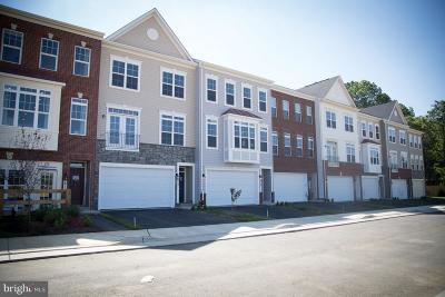 Purcellville Townhouse For Sale: Apsley Terrace