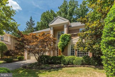 Potomac Single Family Home For Sale: 10009 Chartwell Manor Court