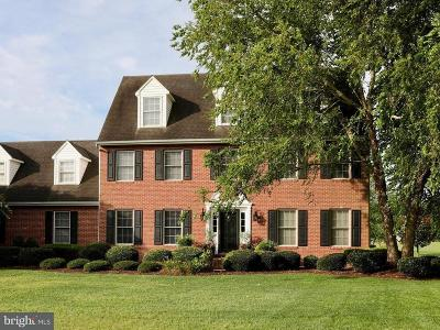 Salisbury Single Family Home For Sale: 30041 Rolling Meadows Road